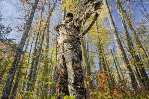 Hunting for Beginners: Where and How to start?