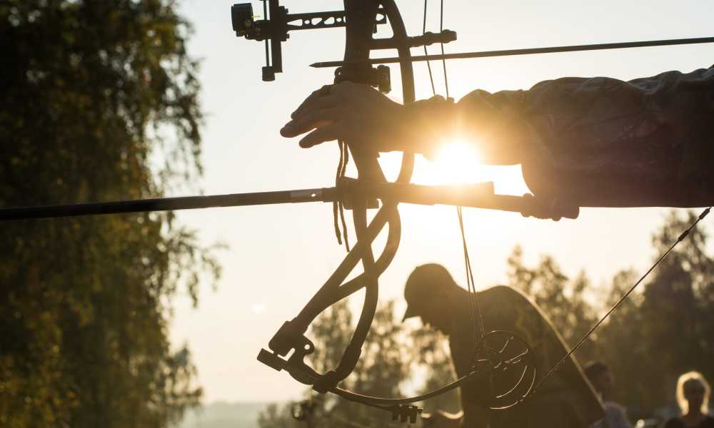 The Bear Archery Cruzer Bow – What Younger Bow Hunters Need!