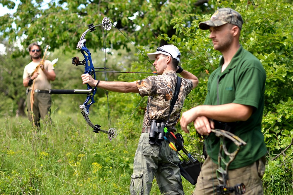 The best ways to Set Up a Compound Hunting Bow