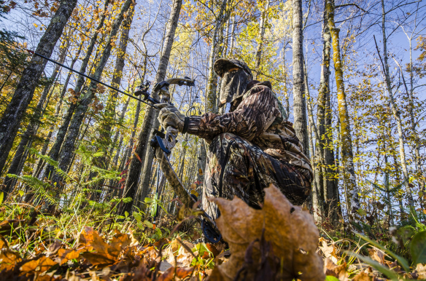 The best ways to Optimize Your Bow for Hunting Season